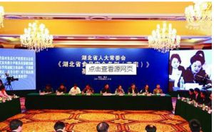 《湖北省食品安全条例(草案)》基层立法听证会